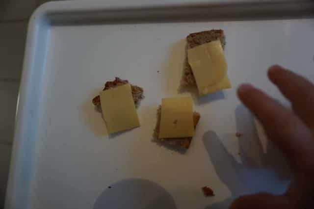 Dineklbrot mit Käse von breifreibaby