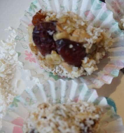 leckere Stillkugeln mit Kokosflocken und Cranberrys von breifreibaby