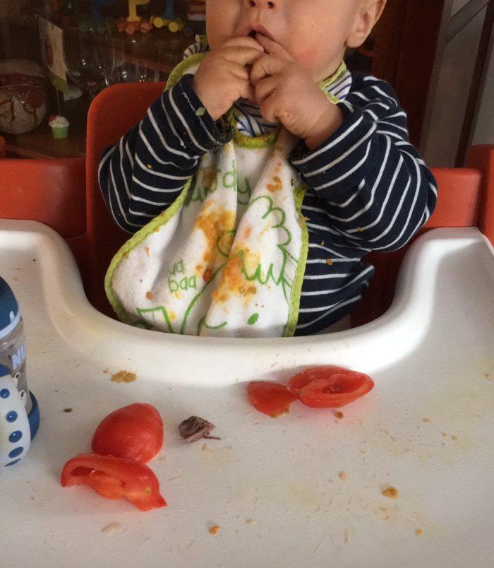 breifreie Ernährung - Erfahrungsberichte von breifreibaby