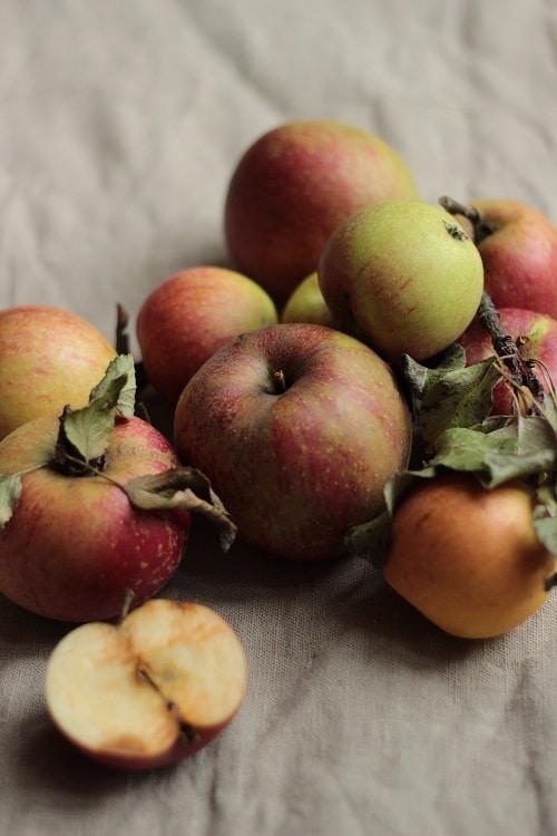 Einsteiger Obst baby-led weaning Äpfel