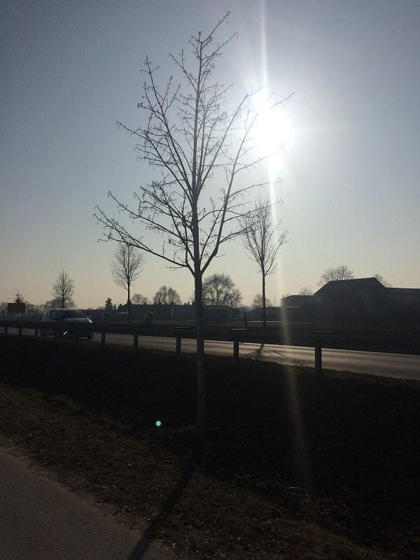 Freitagslieblinge von breifreibaby - endlich Sonne