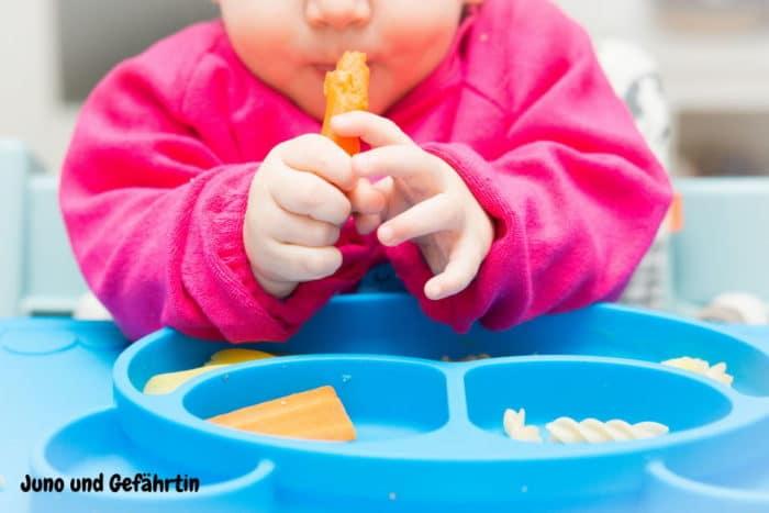 breifrei zur Beikost - Erfahrungsberichte zu baby-led weaning