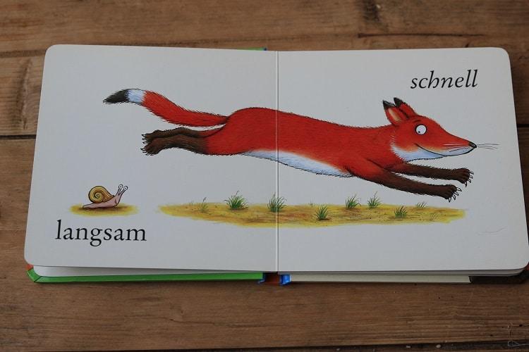 Tolle Kinderbücher: Gegensätze und Mein erste Fühlbuch - wir stellen euch beide vo