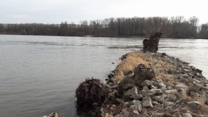 Spaziergang am Rhein bei schönstem Frühlingswetter mit dem breifreibaby