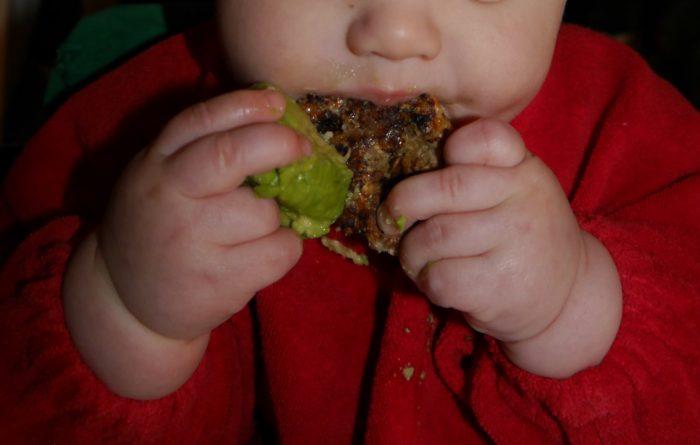 Avocado und Babykekse - Baby-led weaning Erfahrungen im Bericht