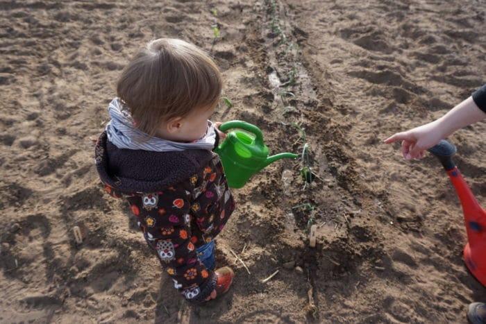 Bio Gärtnern im Saisongarten - Garten mit Kindern