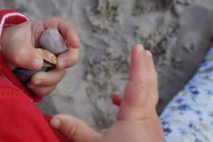 Kindereigenschaften - Kinderhände mit Muscheln am Strand