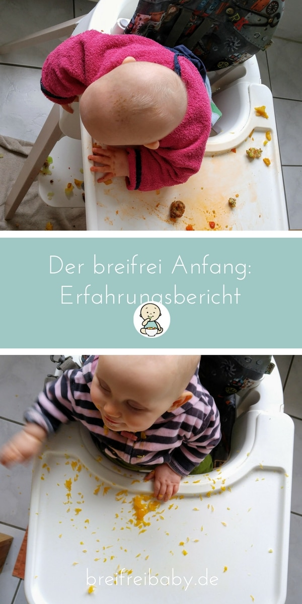 breifrei Anfang - blw und breifrei als Beikost fürs Baby