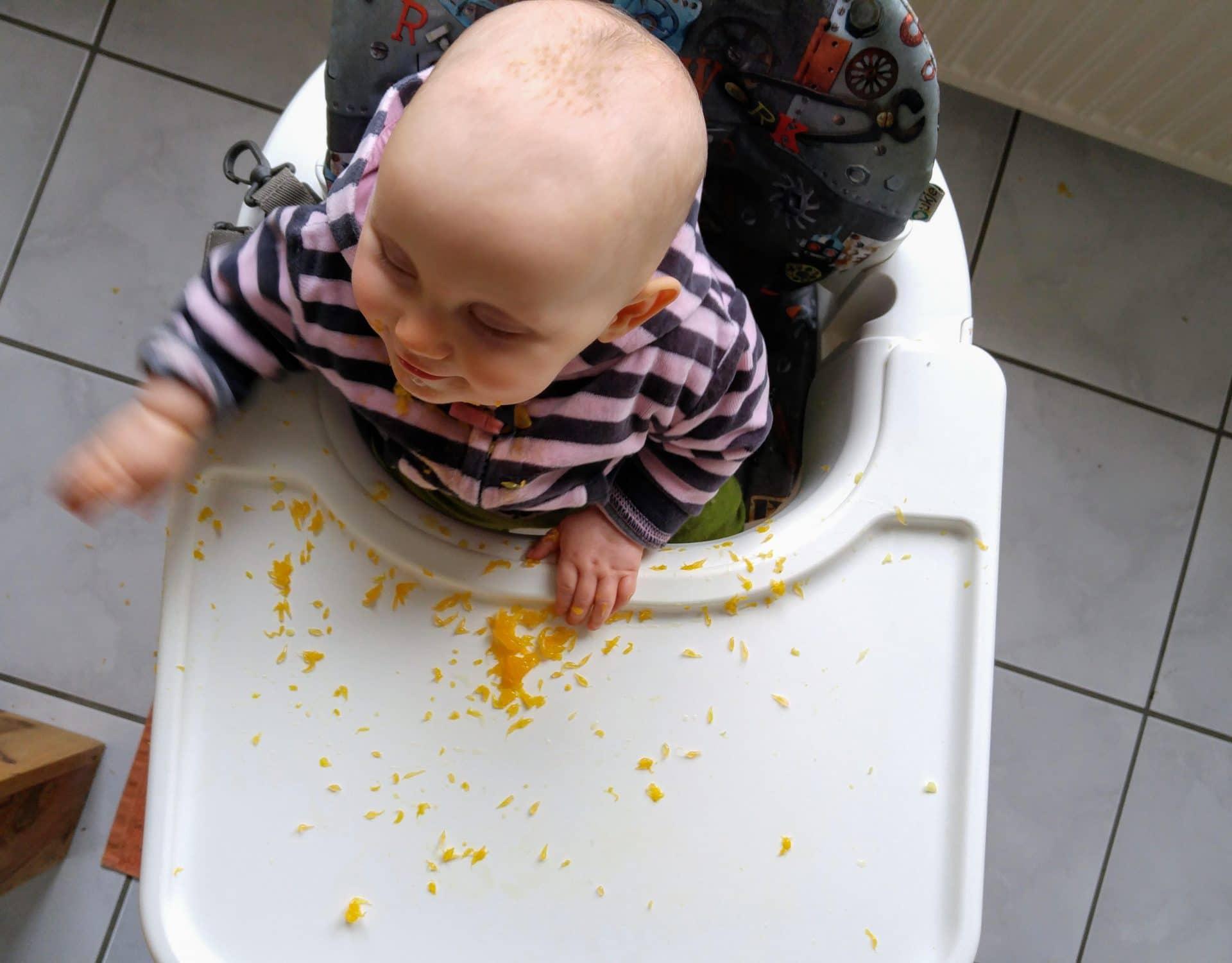Baby Rezepte und BLW Ideen - der breifrei Anfang