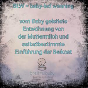 Wir erklären, was baby-led weaning bedeutet - breifrei und BLW Infos