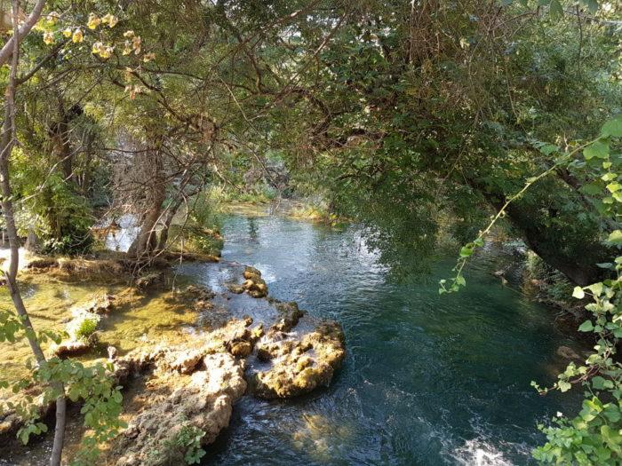 Felsen, Bäume und klares blaues Wasser im Krka Nationalpark in Kroatien
