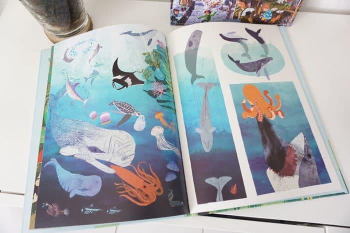 Naturgeschichten - Meer und Meerestiere