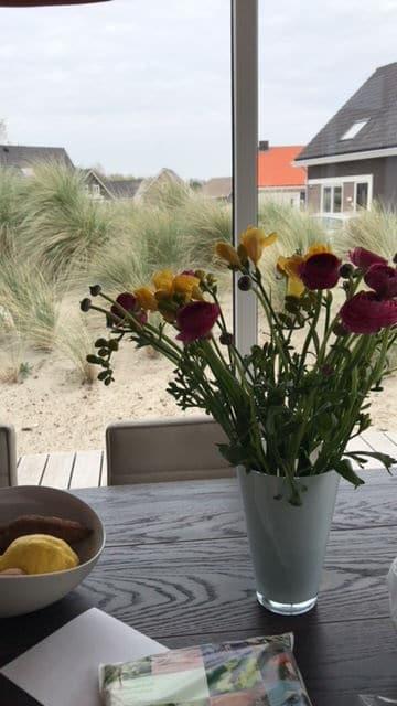 Blumenstrauß in pink und gelb auf Holztisch im Holland Ferienhause - unser Familienurlaub n Südholland