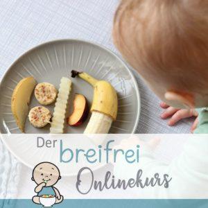 Der große Onlinekurs für eine gesunde Ernährung für dein Baby von Anfang an
