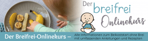 Breifrei Onlinekurs zum Thema BLW