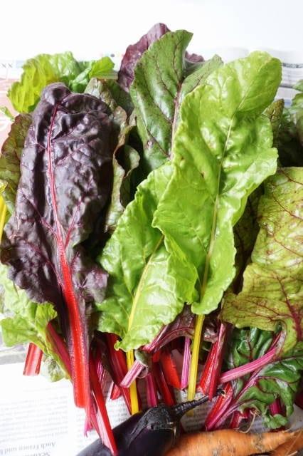 Ungeeignete Lebensmittel für Babys - Blattsalate