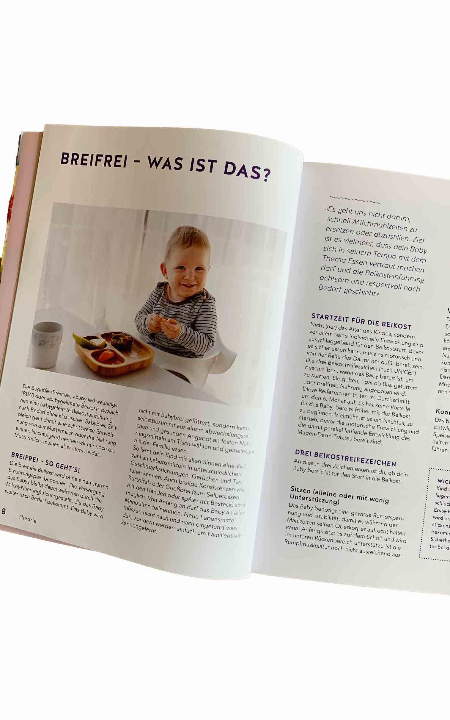 Breifrei das Praxisbuch Theorieteil